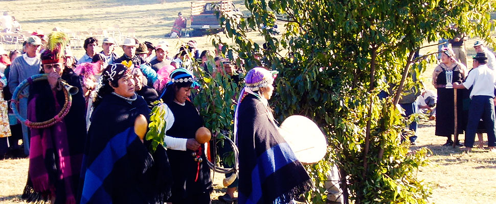 The Mapuche community is fighting for their rights